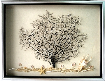 精緻-海樹 [一]