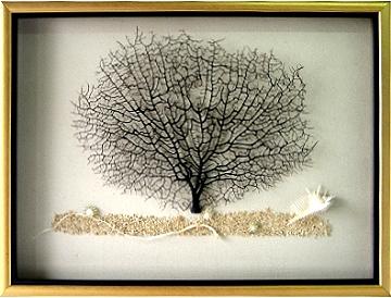 精緻-海樹 [二]
